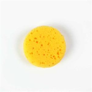 DASASP_synthetic_sponge